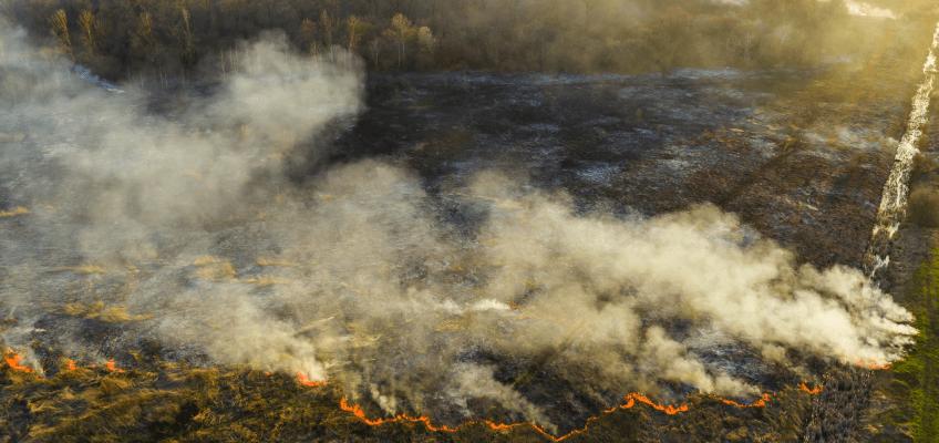 Yangından Etkilenen Yerler İçin Mücbir Sebep Hâli İlan Edildi